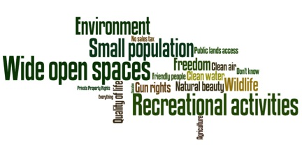 word cloud with environement, small population wide open spaces quality of life and others